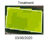 Forrage report - treatment