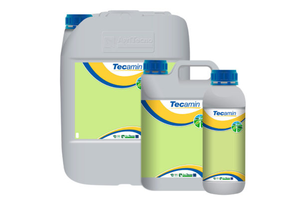 TECAMIN-p
