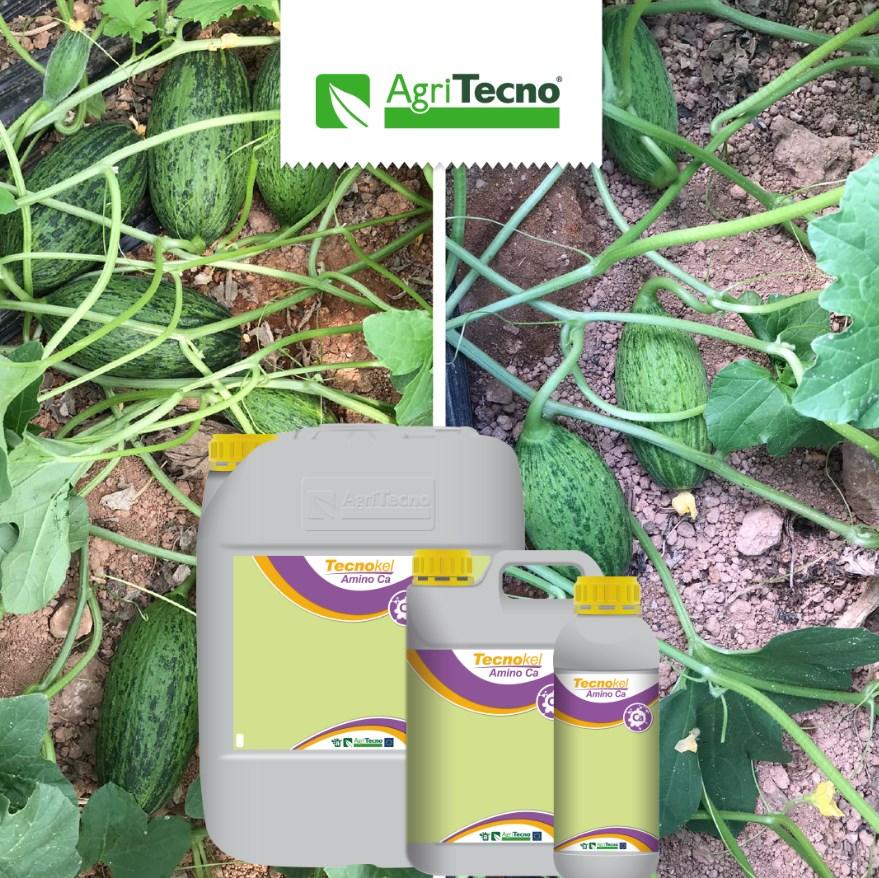 www.agritecno.es