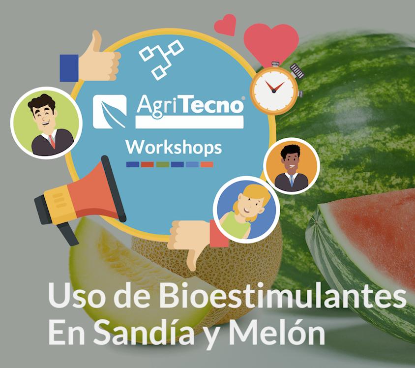 Uso de bioestimulantes en sandía y melón