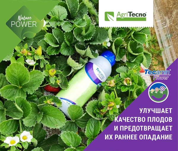 #TecaminFlower It has been proven by genetic studies that the application of the product regulates the natural process of flowering, while at the same time protecting from different situations of stre…