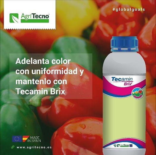 #tecaminBrix
